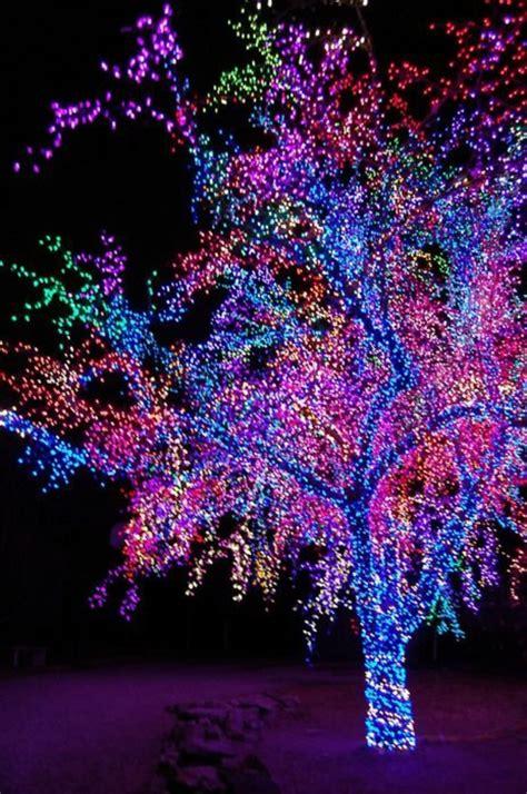 Lichterkette Fenster Innen by Weihnachtsbeleuchtung Und Led Lichterketten F 252 R Innen