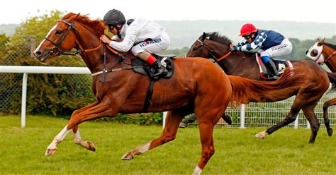 Top tips for horse racing today