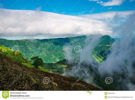 Fog Rainy Season