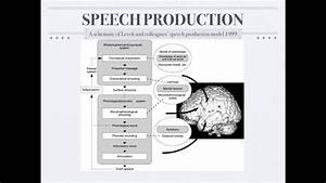 Psycholinguistics  Speech Production