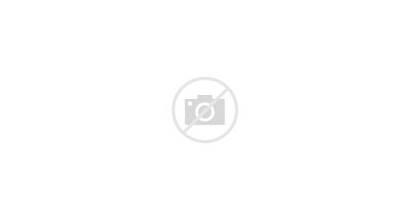 Flight Spiritual Turles Dragon Ball Gohan Fly