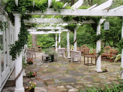vines on pergola tips for vines on pergolas patio covers and arbors twigs landscaping official