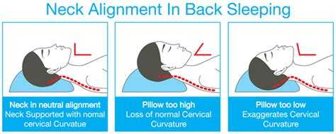 cervical pillow choosing the right pillow mississauga chiropractor and