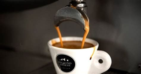 Lavazza Acquires Canada's Kicking Horse Coffee Types Of Coffee Grounds Green Mountain Mocha Nut Fudge Nutrition Facts In Restaurants Modern Table Ornaments Dunkin Donuts For Weight Loss Drinks Uk Quality