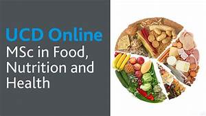 Msc In Food  Nutrition And Health  Ucd Online Course