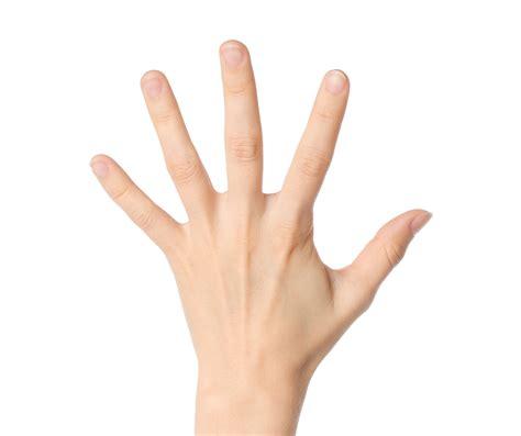 Five Fingers the five finger prayer allworship
