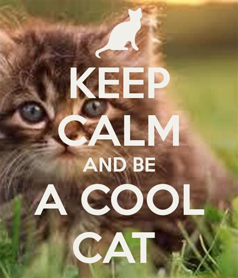 how to be a cool keep calm and be a cool cat poster georgie churcher keep calm o matic