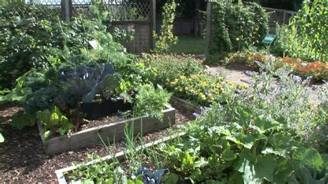 pictures of a vegetable garden moved permanently