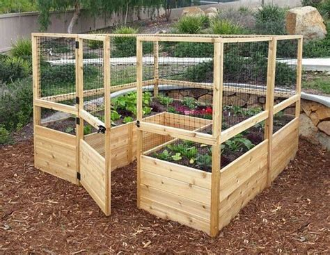 Enclosed Vegetable Garden With Raised Beds Pictures