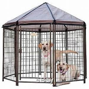 Pics for gt small outdoor dog pen for Outdoor dog pens for small dogs