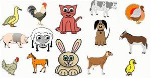 The sounds of farm animals for kids.Cartoon - YouTube