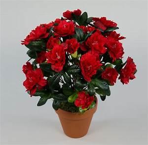 Kunstblumen Orchideen Topf : azalee 34cm rot im topf la kunstpflanzen k nstliche pflanzen blumen kunstblumen ebay ~ Whattoseeinmadrid.com Haus und Dekorationen