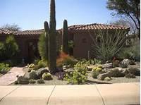nice desert garden design Desert Landscaping Ideas