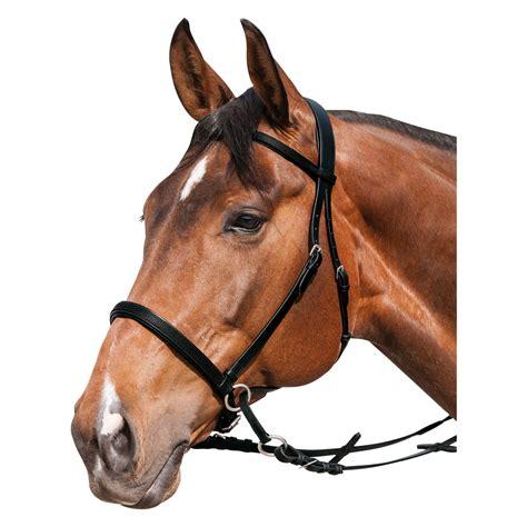 horse friends gebisslose zaeumung gebisslose zaeumungen