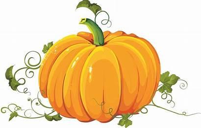 Pumpkin Transparent Clipart Purepng Cc0