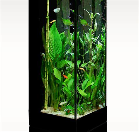 acheter du verre pour aquarium colonne jardin pour plantes grimpantes