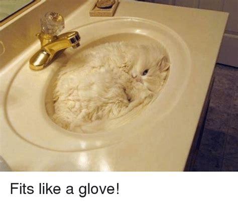 Like A Glove Meme - fits like a glove meme on sizzle