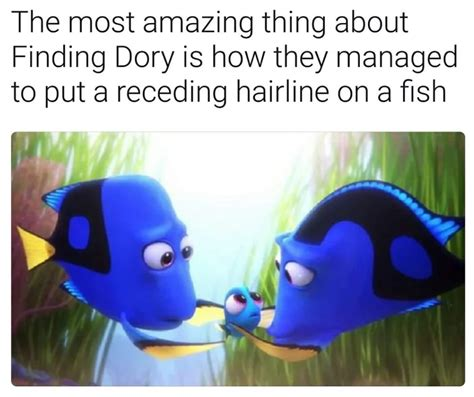 Finding Nemo Memes - now this is quot creative people quot finding nemo know your meme