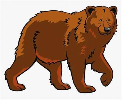 Bear Clip Brown Clipart Polar Eurasian Kindpng
