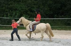Bilder Von Pferden : kindergeburtstag mit pferden auf ~ Frokenaadalensverden.com Haus und Dekorationen