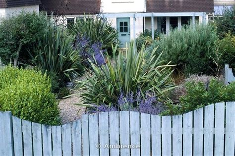 Cytotec Review Front Garden Fence Exhort Me