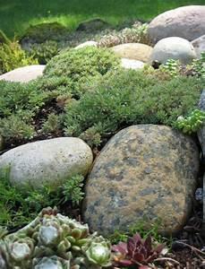 Steine Für Beete : 53 erstaunliche bilder von gartengestaltung mit steinen ~ Lizthompson.info Haus und Dekorationen