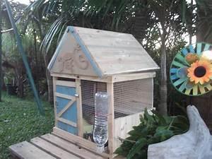 Maison Pour Lapin : clapier a lapin fait maison pour 2 lapins avec abreuvoir ~ Premium-room.com Idées de Décoration