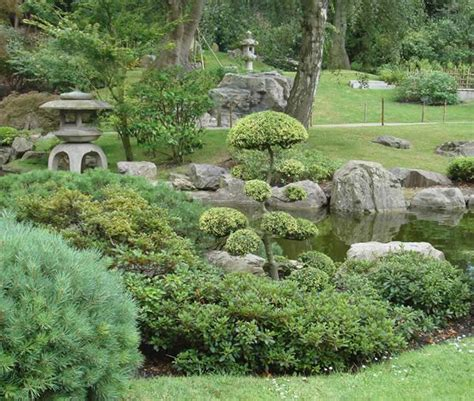 plants in a japanese garden plants for japanese gardens uk japanese garden plants