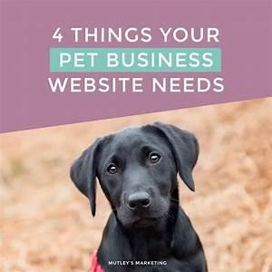 best 25 pet sitting ideas on pinterest dog walking With best dog walking websites