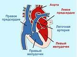 Гиперкинетическая форма гипертонической болезни лечение