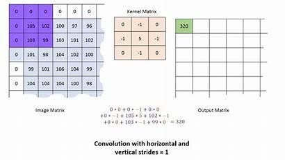 Matrix Neural Convolutional Kernel Learning Network Convolution