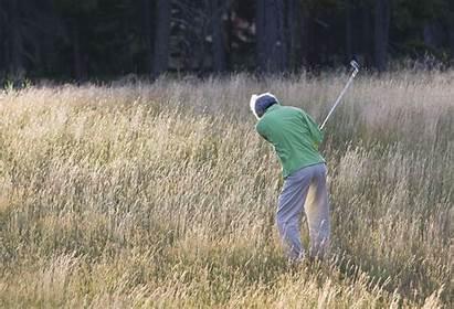 Handicap Golf Highest Golfer
