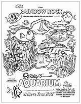 Coloring Pages Aquarium Tank Beach Ocean Ripley Underwater Printable Sheets Ripleys Creatures Believe Mermaid Rainbow Myrtle Rocks Found Learning Rock sketch template