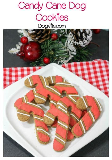 hypoallergenic dog treats holiday dog treat candy canes