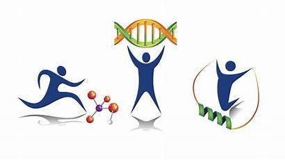 Molecular Physical Activity Activities Exercise Graphic Dna