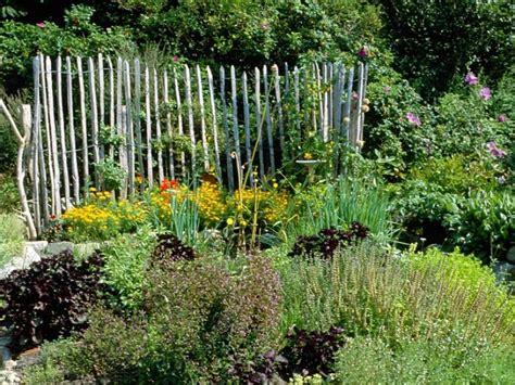 Pflanzzeit Tipps Für Den Perfekten Kräutergarten Newsde