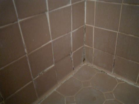 How To Remove Black Mold From Bathroom Tile Ehow Uk