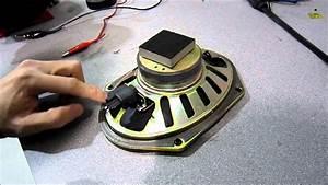 Checking For Positive  U0026 Negative On A Speaker  Speaker Polarity