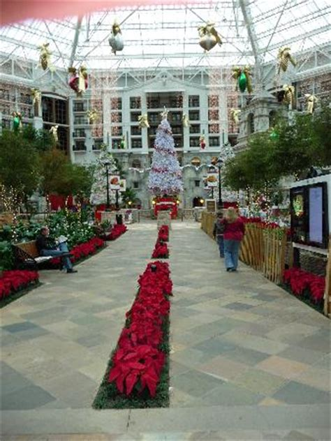 lighting stores grapevine tx gaylord texan restaurants noticed groups gq
