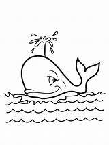 Whale Coloring Printable sketch template