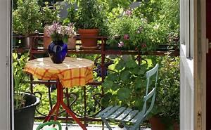 rechte und pflichten auf dem balkon With katzennetz balkon mit natur garden
