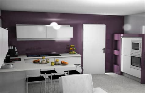 cuisine aubergine et gris votre avis sur mon projet de cuisine