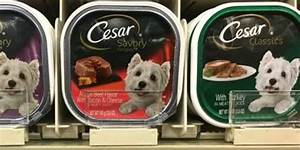 free cesar wet dog food for kroger shoppersliving rich With cesar dog food costco