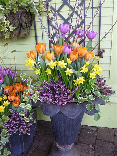 A Bouquet Of Spring Containers — Enchanted Gardens