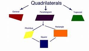 Quadrilaterals Shapes
