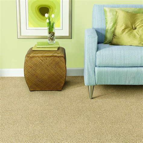 78 Images About Mohawk Smartstrand Carpet On Pinterest