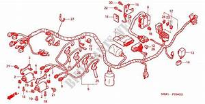 Wire Harness Ignition Coil For Honda Cb 1300 Super Four 2000   Honda Motorcycles  U0026 Atvs Genuine