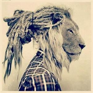 Hipster Lion Tumblr