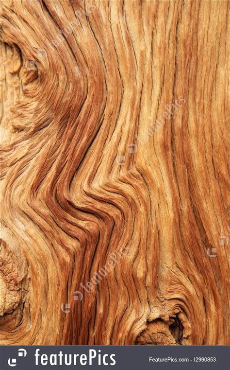 picture  curved wood grain