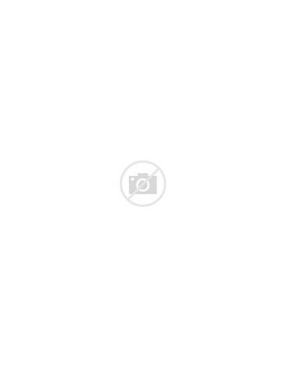 Tanzanite Swarovski Crystal Earrings Nirvana Lyst